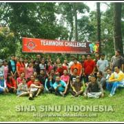 teamwork challenges